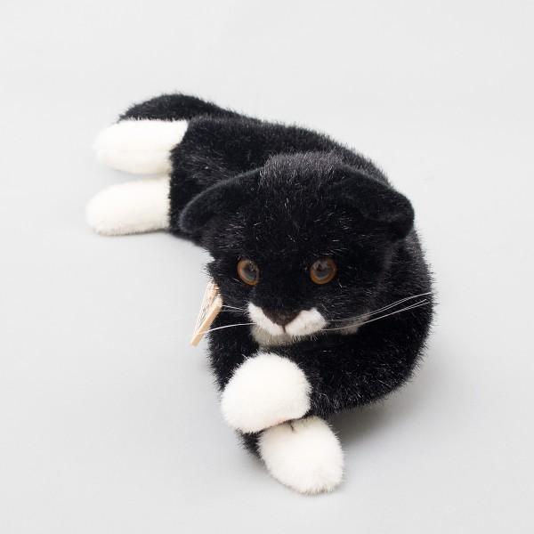 Kösen Katze Fini