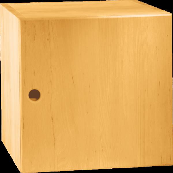 Max Regalwürfel 40 x 40 cm, mit Tür