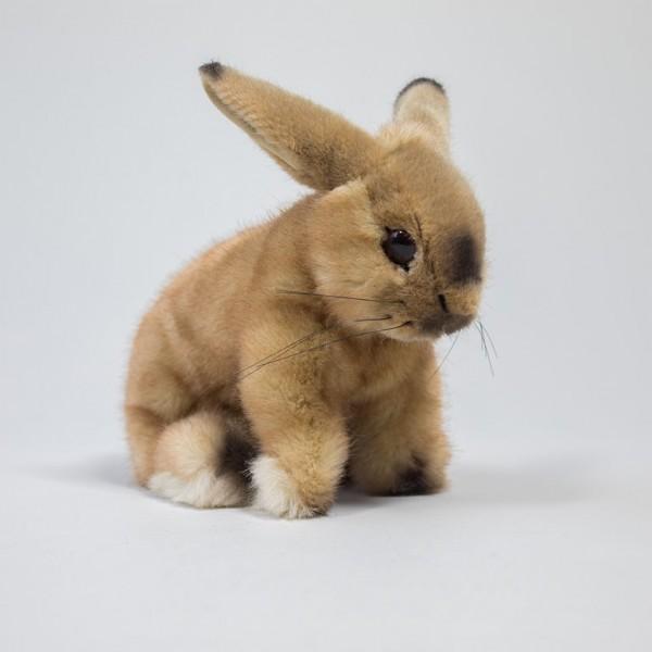 Kaninchen Sahara von Kösen