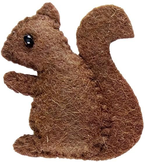Mein bester Freund Eichhörnchen